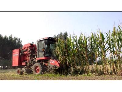 鄭州中聯2019款玉米機作業視頻