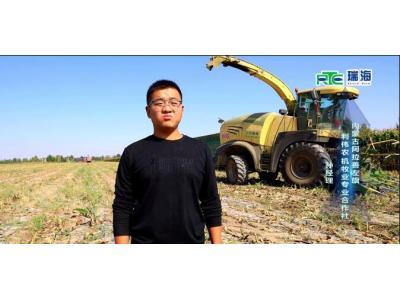 瑞海-科罗尼青贮机在张掖市作业视频
