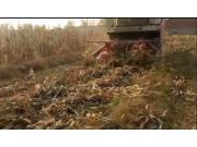 牧泽4QZ-14A青饲料收获倒伏作业视频