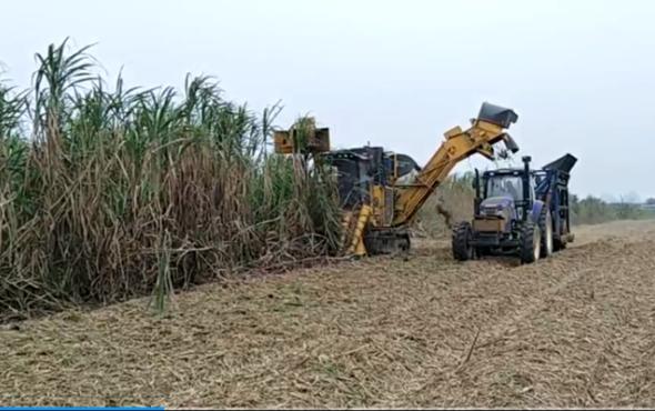 柳工S935T切段式甘蔗ballbet苹果客户端现场演示视频