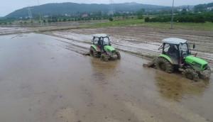 道依茨法尔水田专用果园专用拖拉机作业视频