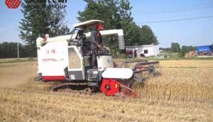 沃得尊享版小麦收割视频