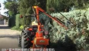 意大利RINIERI BRM灌木園林單臂式橫豎可調式修剪機