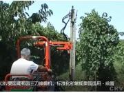 意大利RINIERI CRV果園葡萄園三刀修剪機,標準化和常規果園適用-前置