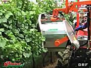 意大利RINIERI DRF型双剪型树叶修剪机