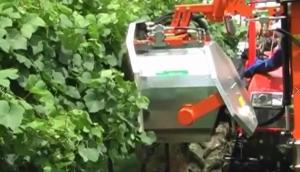意大利RINIERI DRF型雙剪型樹葉修剪機