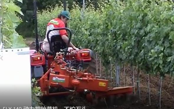 意大利RINIERI ELX 140 動力耙除草機-不怕石頭