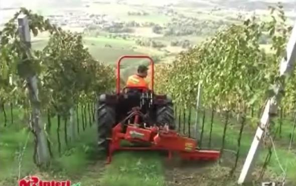 意大利RINIERI EL动力耙后置前置棵间除草机-前置