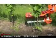 意大利RINIERI SRV型單側抽打型除草機-適于多石土壤果園