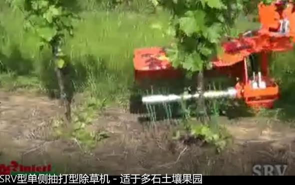 意大利RINIERI SRV型单侧抽打型除草机-适于多石土壤果园