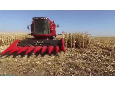 国内玉米割台第一品牌 天人农机视频