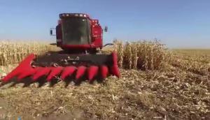 國內玉米割臺第**品牌 天人農機視頻