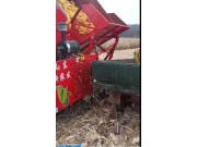 新農發四驅玉米收割機扒皮效果好,不磕粒