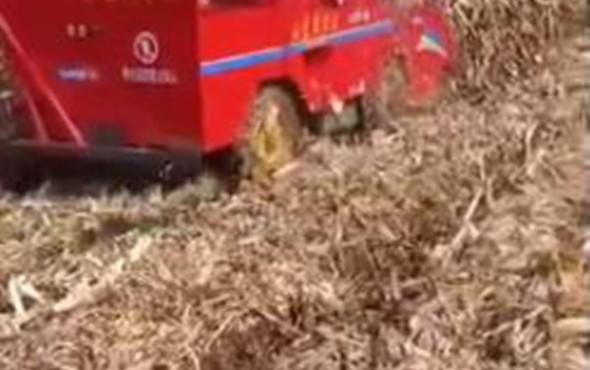 新农发三行四驱玉米收——速度快