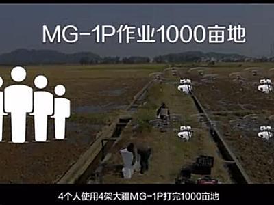 山东数字化千亩小麦统防统治-大疆农业