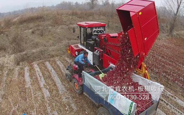 河北雷肯辣椒收获机产品视频