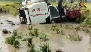 沃得銳龍專業跨區版爛泥田收割作業視頻