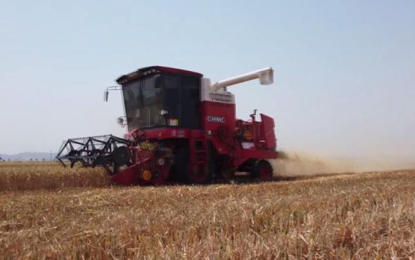 郑州中联收获小麦收割机作业视频