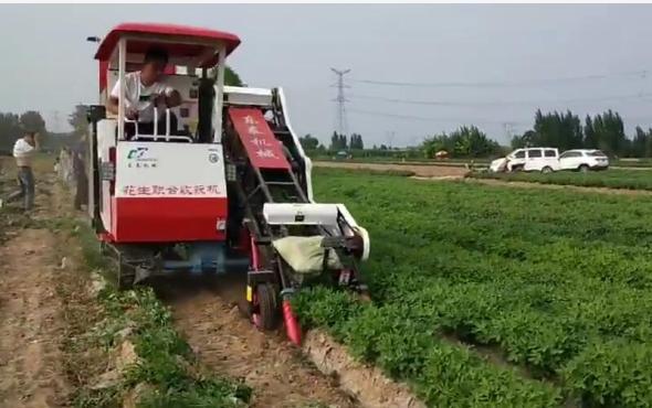 东泰机械花生联合收获机演示视频