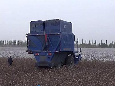 東風農機4MZ-3A采棉機作業視頻