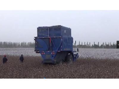 东风农机4MZ-3A采棉机作业视频