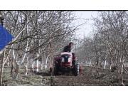 东风农机DF604-15大棚王拖拉机作业视频