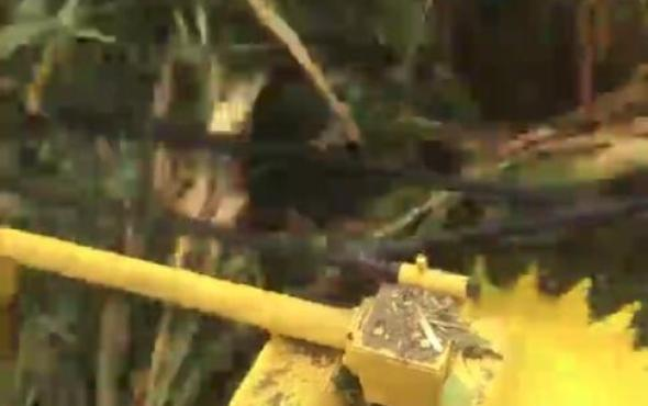北京德樂4QZ-830A青貯飼料收獲機-收倒伏現場