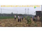 春明牌4LGZ系列自走式葫芦打瓜籽粒收获机作业-作业视频
