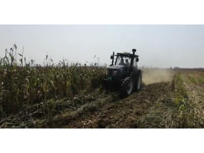农神1LFT-360翻转犁配套雷沃1604拖拉机高粱地耕地作业