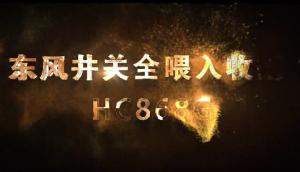 东风井关HC868G全喂入收割机特点解析,视频超震撼