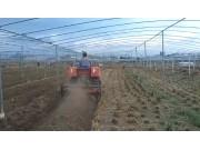 湖南农夫NF-Y602履带拖拉机-大棚王-作业视频