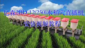 浙江亿森2BD-12(250)水稻穴直播机安装视频教程
