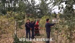 佐佐木履帶自走式果枝粉碎機-作業視頻