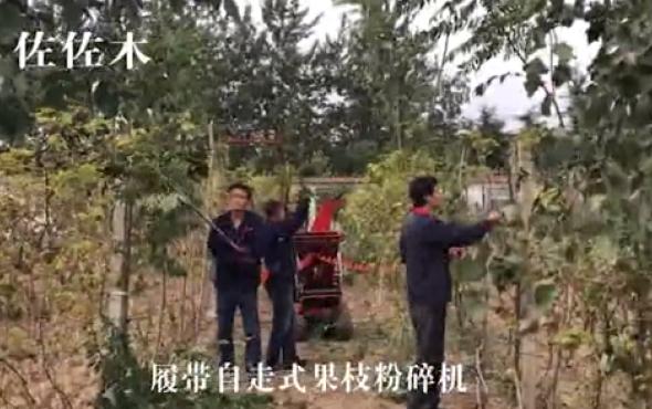 佐佐木履带自走式果枝粉碎机-作业视频