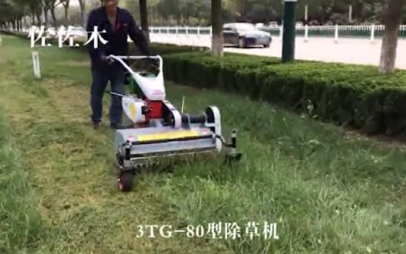 佐佐木3TG-80除草机-作业视频