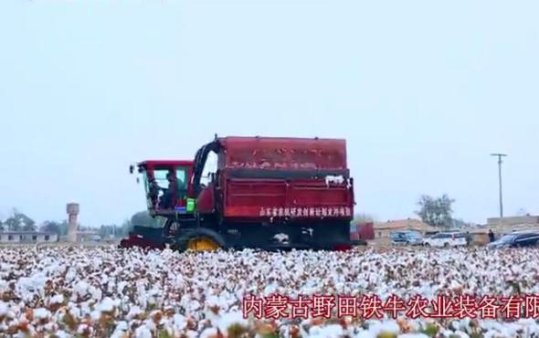 野田鐵牛4MZ-3自走式棉花收獲機作業視頻