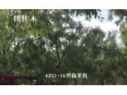 森海4ZG-16型果实采摘机-作业视频