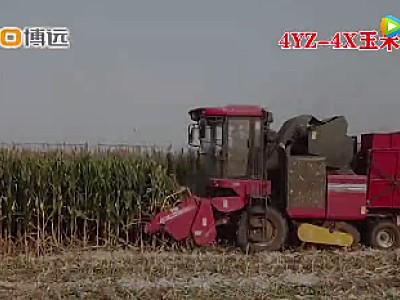 中农博远4YZ-4X玉米收获机作业视频