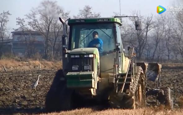 卓收農機DEUTZ-FAHR+Drago2玉米割臺收獲視頻賞析
