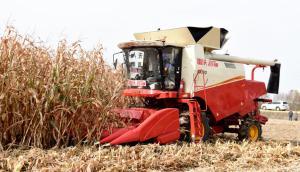 北大荒建三江—碧桂园无人化农场玉米全程无人机械化作业