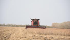 北大荒建三江—碧桂园无人化农场大豆全程无人机械化作业