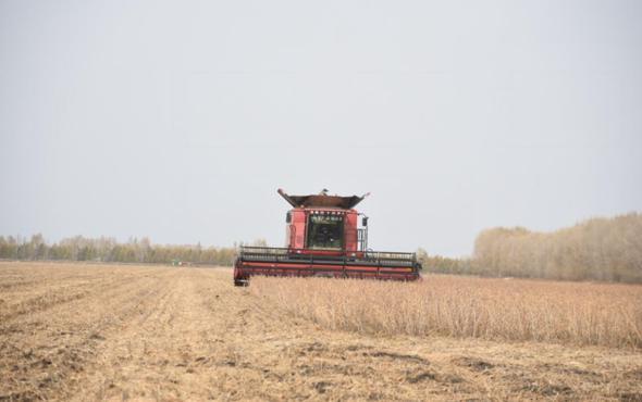 北大荒建三江—碧桂園無人化農場大豆全程無人機械化作業