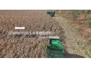 常發農裝CF904B/905B玉米果穗收獲機作業視頻