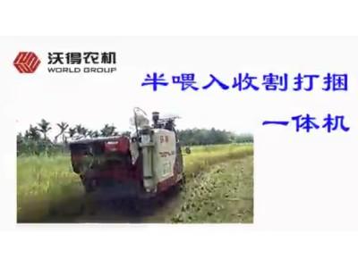 沃得农机半喂入收割打捆一体机-作业视频