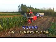 河北农哈哈4QZ-18A青raybet32raybet08-作业[raybet下载iphone]视频