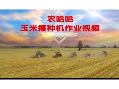 农哈哈玉米播种机-作业视频