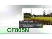 常發CF805N履帶式收割機--作業視頻