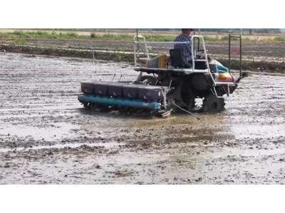 久保田2BDZ-10(DSPV-10C25)自走式水稻直播机作业视频