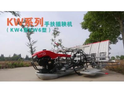 久保田全新KW系列手扶式插秧机作业视频