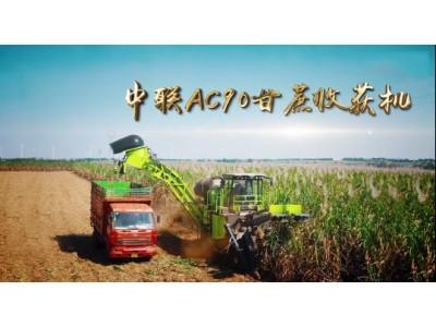 中联AC90大吨位甘蔗收获机作业视频